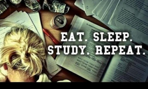 TOP 10 Student Study Tips to help you breeze through your  exams!